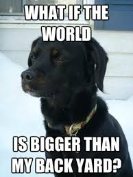 Philosophical Memes - philosophical puppy dogs know your meme