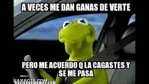 Memes Rana Rene - memes de la rana rene youtube
