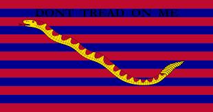 North Carolina Flag History File Ensign Of The South Carolina Navy Svg Wikimedia Commons