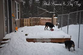 pet zone tuff n rugged dog house roselawnlutheran