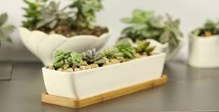 swonvi tm 11 1 inch long rectangle white ceramic succulent