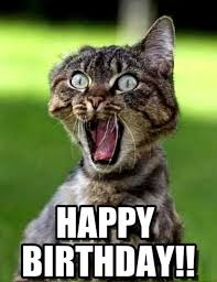 Happy Birthday Cousin Meme - 130 happy birthday cousin quotes with images and memes