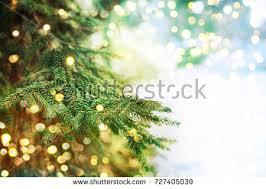 closeup christmastree background stock photo 297372143