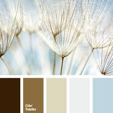 sand color color palette ideas