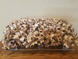 natural barnacle cluster clump luxe statement size sculpture for