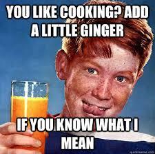Ginger Meme - perverse ginger memes quickmeme