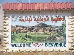 الجمهورية الجزائرية الديمقراطية الشعبية Images?q=tbn:ANd9GcSpQGUUWZHSVCFXDCd3eQQJ6Cr8ad3kPF6duKF1A5p3s343V13-