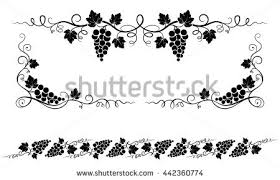 grape vine vector stock images royalty free images vectors