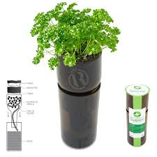 Self Watering Self Watering Vase W Grow Kit Eco Bottlekit Relaxtribe