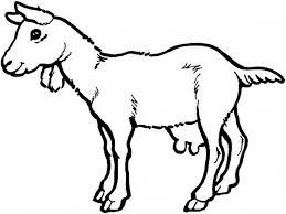 free coloring pages goats goat coloring pages color luna