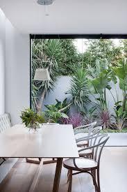 best 25 courtyard house ideas on pinterest modern indoor