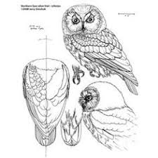 Wood Carving Patterns For Free by Stupid Simple Wood Carving Designs For Beginners Best Wood
