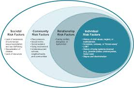commercial risk model 3 risk factors for and consequences of commercial sexual