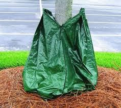 tree watering bags root watering for trees