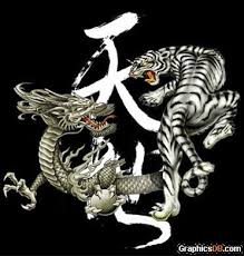 view tiger design yin sle shaolin meaning in