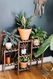 Interior Plant Wall 127 Best Gardening 101 Images On Pinterest Plants Indoor Plants