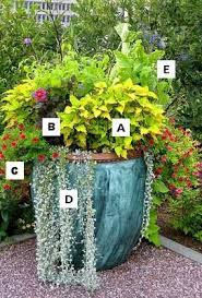 Ideas For Container Gardens 13 Best Images About Gardening On Pinterest Flower Container