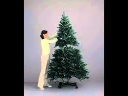 devonshire flip tree