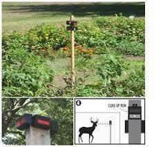 nite guard solar predator control light 4 pack new nite guard solar ng 001 predator control light single pack top
