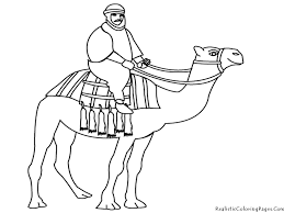 camel coloring pages realistic bebo pandco