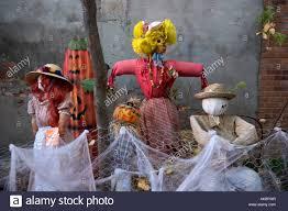 happy halloween shan cait photography sacramento family