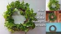 Green Plants Green Plants Youtube