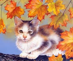 cat live wallpaper android apps on play