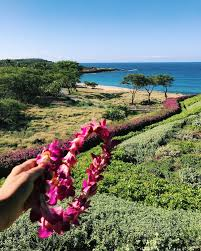 lanai pictures checking in four seasons lanai the simple sol