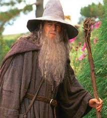 wizards the one wiki to rule them all fandom powered by wikia