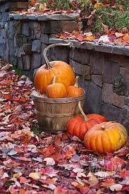 25 autumn pictures ideas autumn leaves