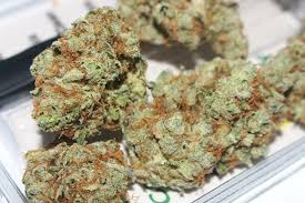 Weed Maps San Diego by San Diego Green U2013 Medical Marijuana Delivery U2013 Direct To Your Door