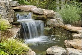 backyards chic small garden pond design kid safe and parent