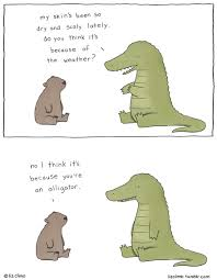 awkward everyday lives of animals by simpsons illustrator liz