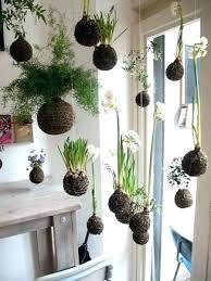 Indoor Hanging Garden Ideas Indoor Vertical Garden Wall Katecaudillo Me
