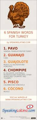 educational infographic infographic 6 language words