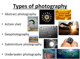 Types Of Photography Photography