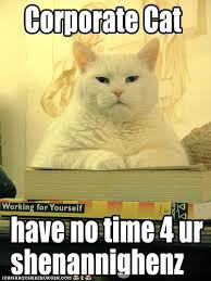 Working Cat Meme - lol cats images shenanaginz wallpaper and background photos 23579504
