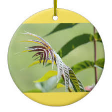 nature themed ornaments keepsake ornaments zazzle