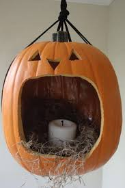mini pumpkin carving ideas 25 best funny pumpkin carvings ideas on pinterest funny