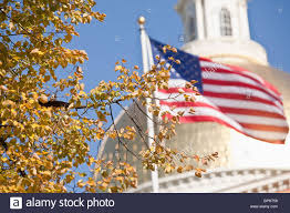 Mass State Flag Tree And An American Flag In Front Of A Government Building Stock
