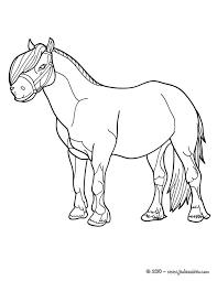 coloriages poney à imprimer et colorier fr hellokids com