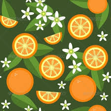 fruit and flowers seamless orange fruit and flowers texture 545 by dimanchik