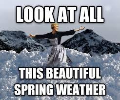 Snow Meme - livememe com look at all the snow