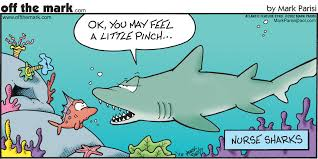 nurse shark cartoon allnurses