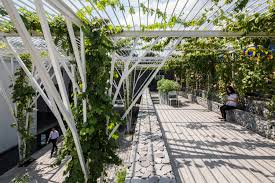 gallery of vegetable trellis cong sinh architects 1