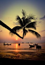 49 best koh tao images on pinterest people thailand and places