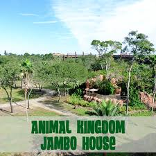 disney with toddlers u2013 animal kingdom villas jambo house review