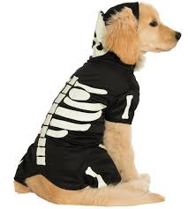Glow Dark Halloween Costumes Glows Dark Pet Costume Pet Costumes