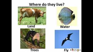science types of animal habitat telugu youtube