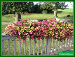 Lowes Planter Box by 95 Best Flower Boxes Images On Pinterest Window Boxes Windows